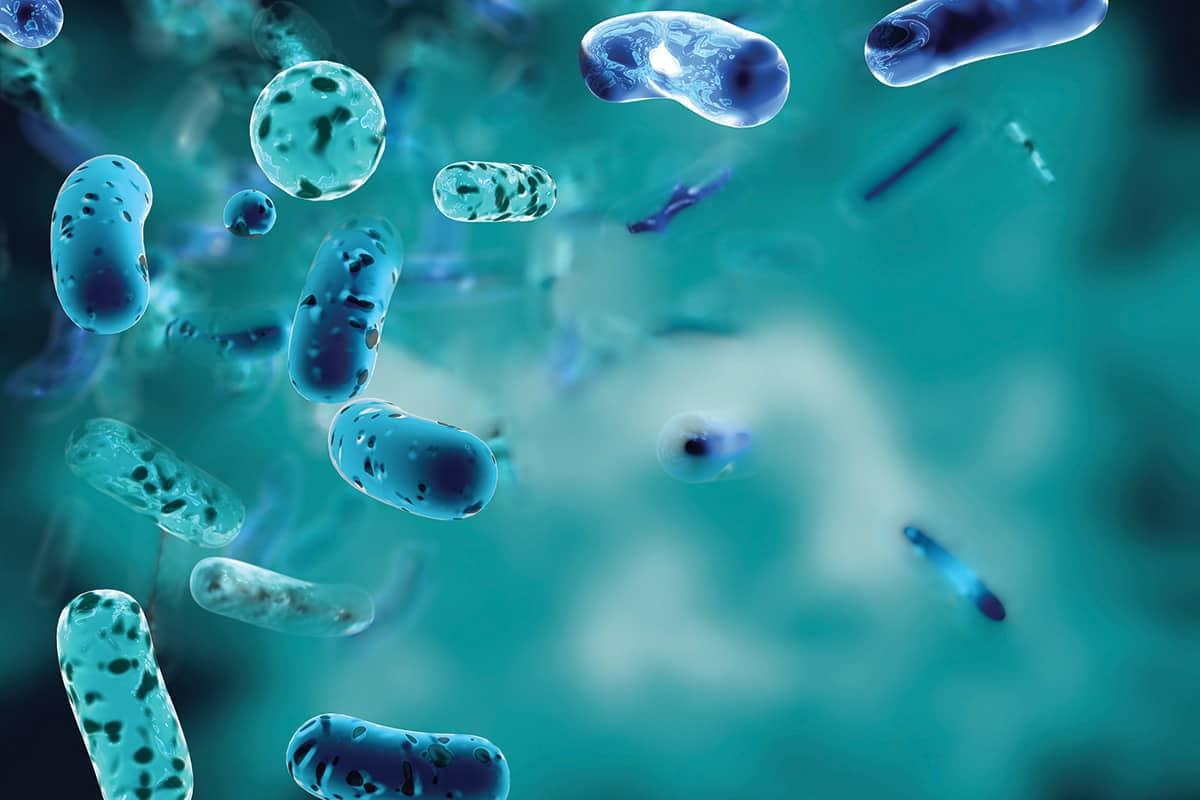 Prevenção e Controlo de Infecção